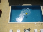 apartment in Ravda - Pool