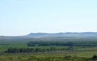 Kosharitza bulgaria